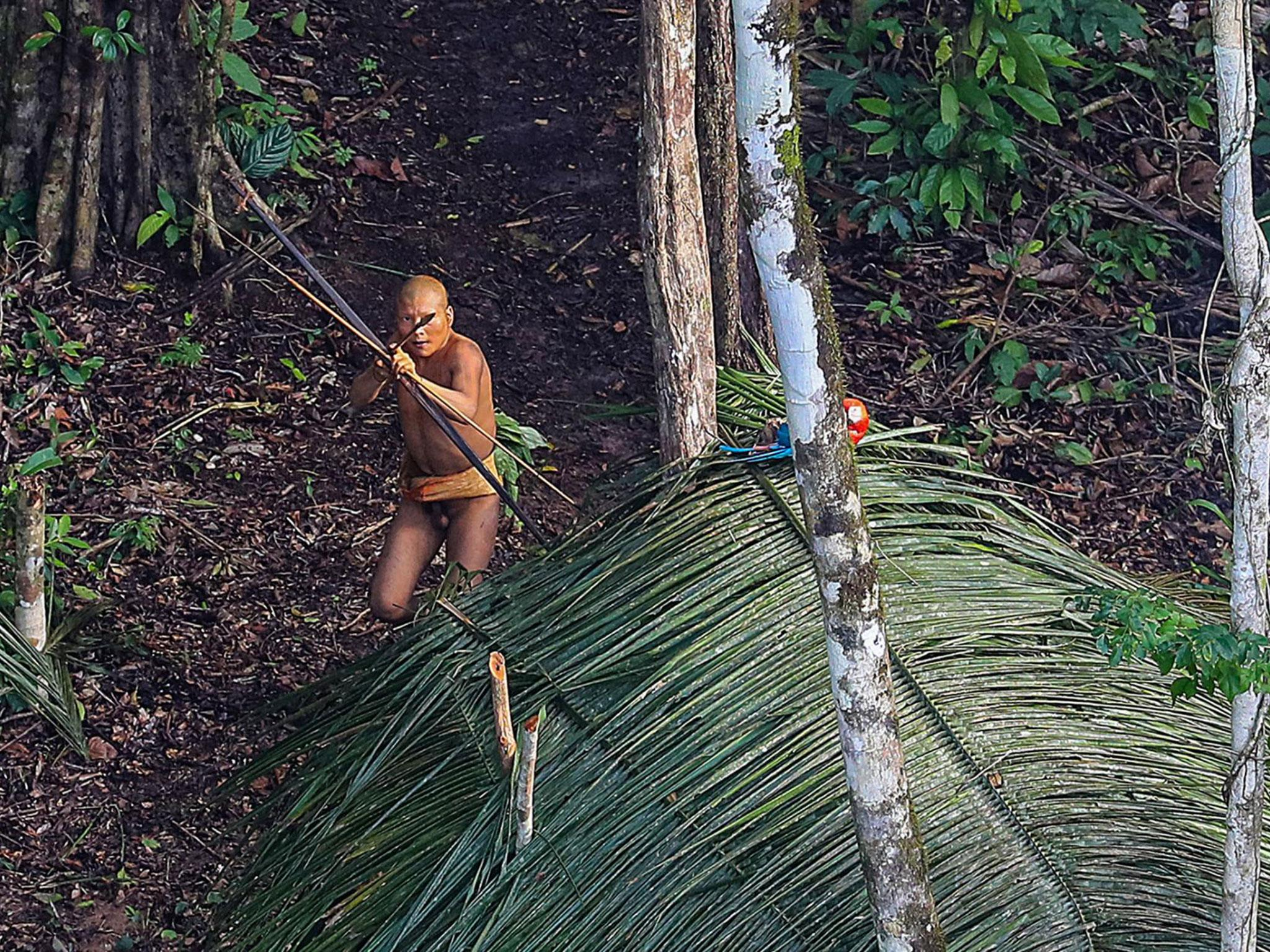 Photographer captures images of uncontacted ancient amazon tribe photographer captures images of uncontacted ancient amazon tribe the independent sciox Image collections