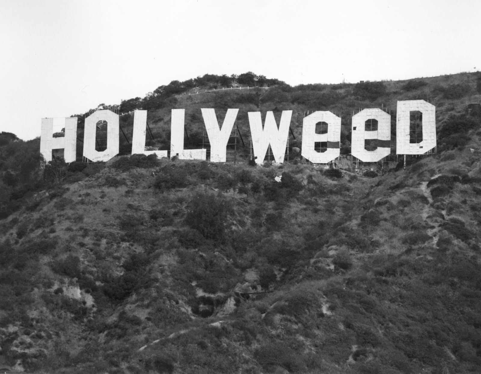 Image result for hollyweed 1976