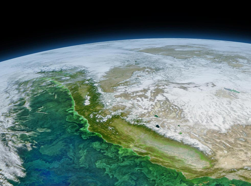 A satellite image of the US West Coast taken in 2016 shows dark green colours near the continental margin, indicating blooms of phytoplankton, some of which produced toxins