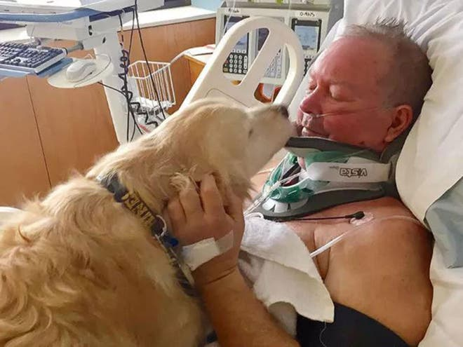 Bob and his dog Kelsey, which kept him alive after he broke his neck in snowy conditions (McLaren Northern Michigan Hospital )