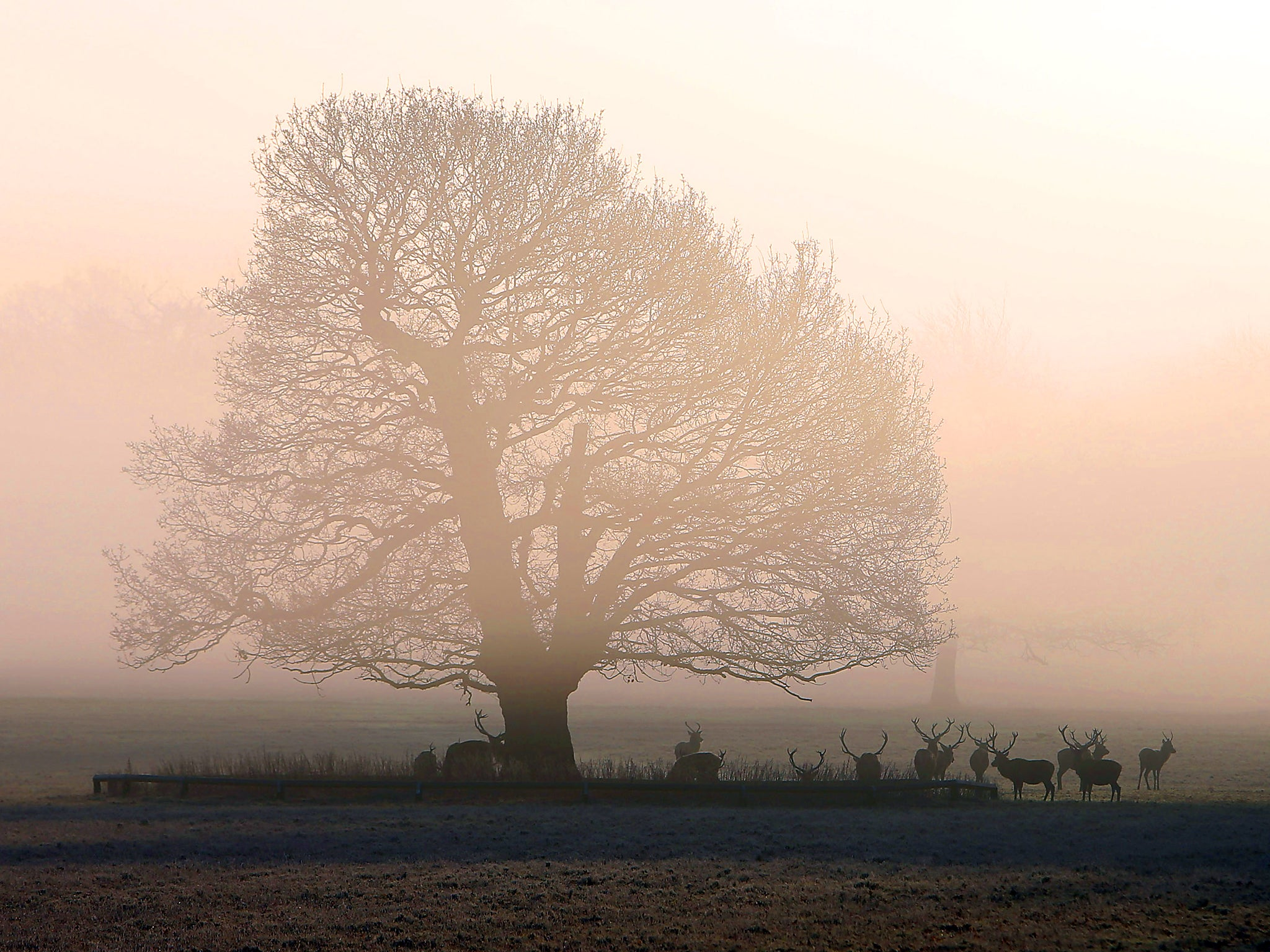 UK weather latest: Temperatures to fall below zero as Britain faces 'polar vortex'
