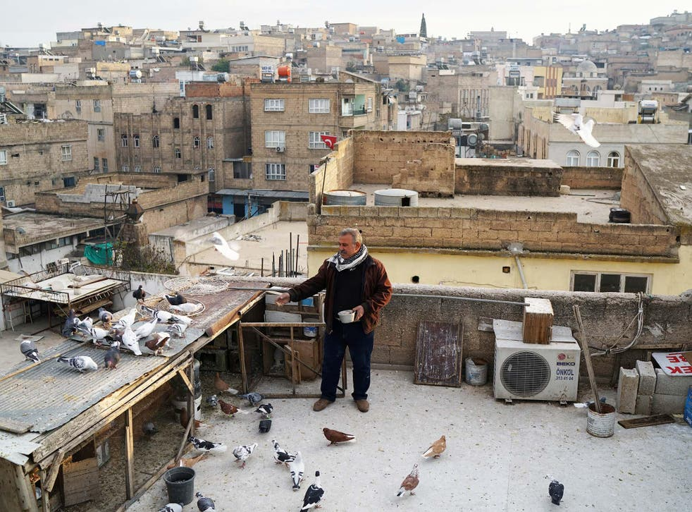 Resit Guzel feeds his pigeons on top of a roof in Sanliurfa