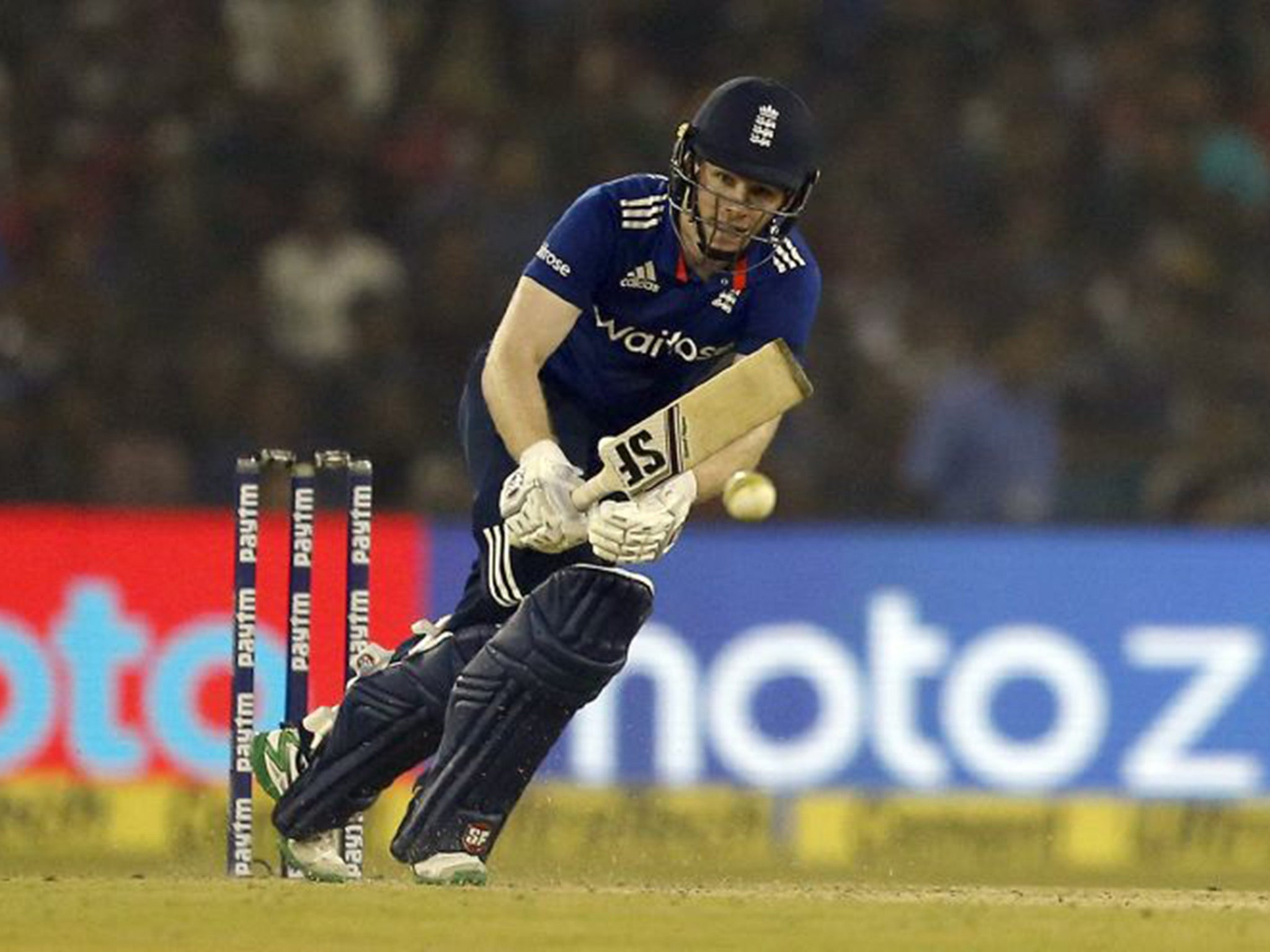 Eoin morgan took no satisfaction from england defeat despite eoin morgan took no satisfaction from england defeat despite gritty century against india the independent fandeluxe PDF