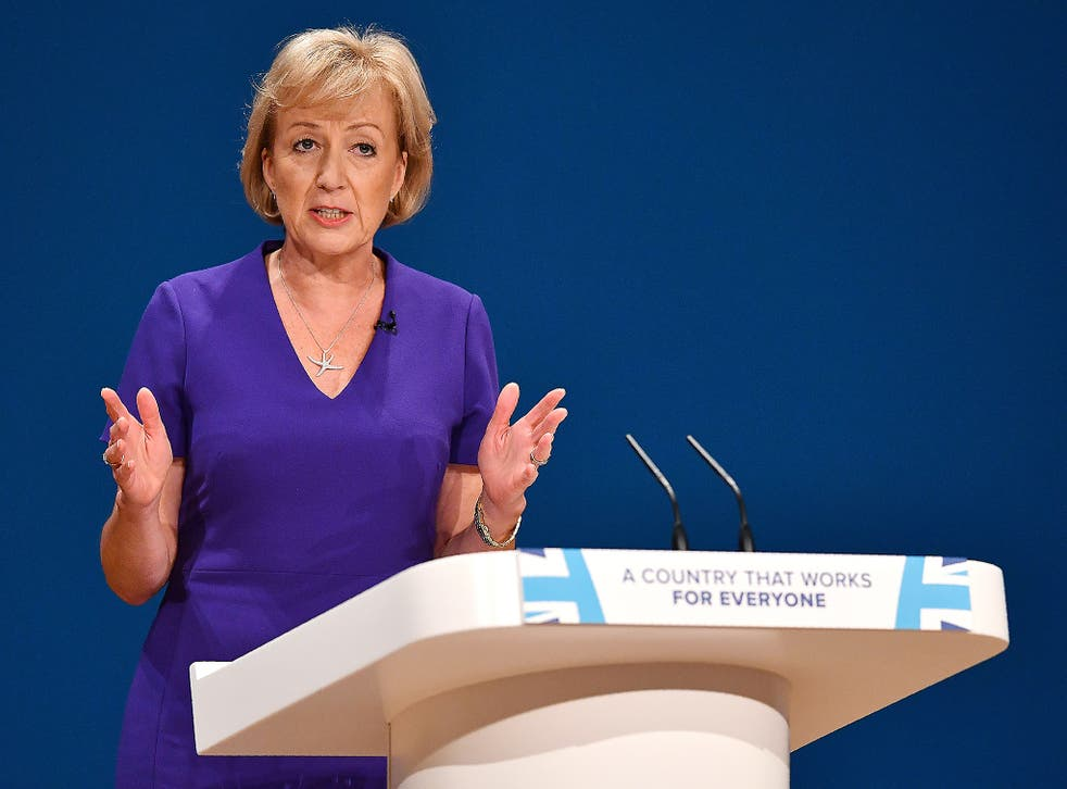Environment Minister Andrea Leadsom suggested air pollution was not an emergency