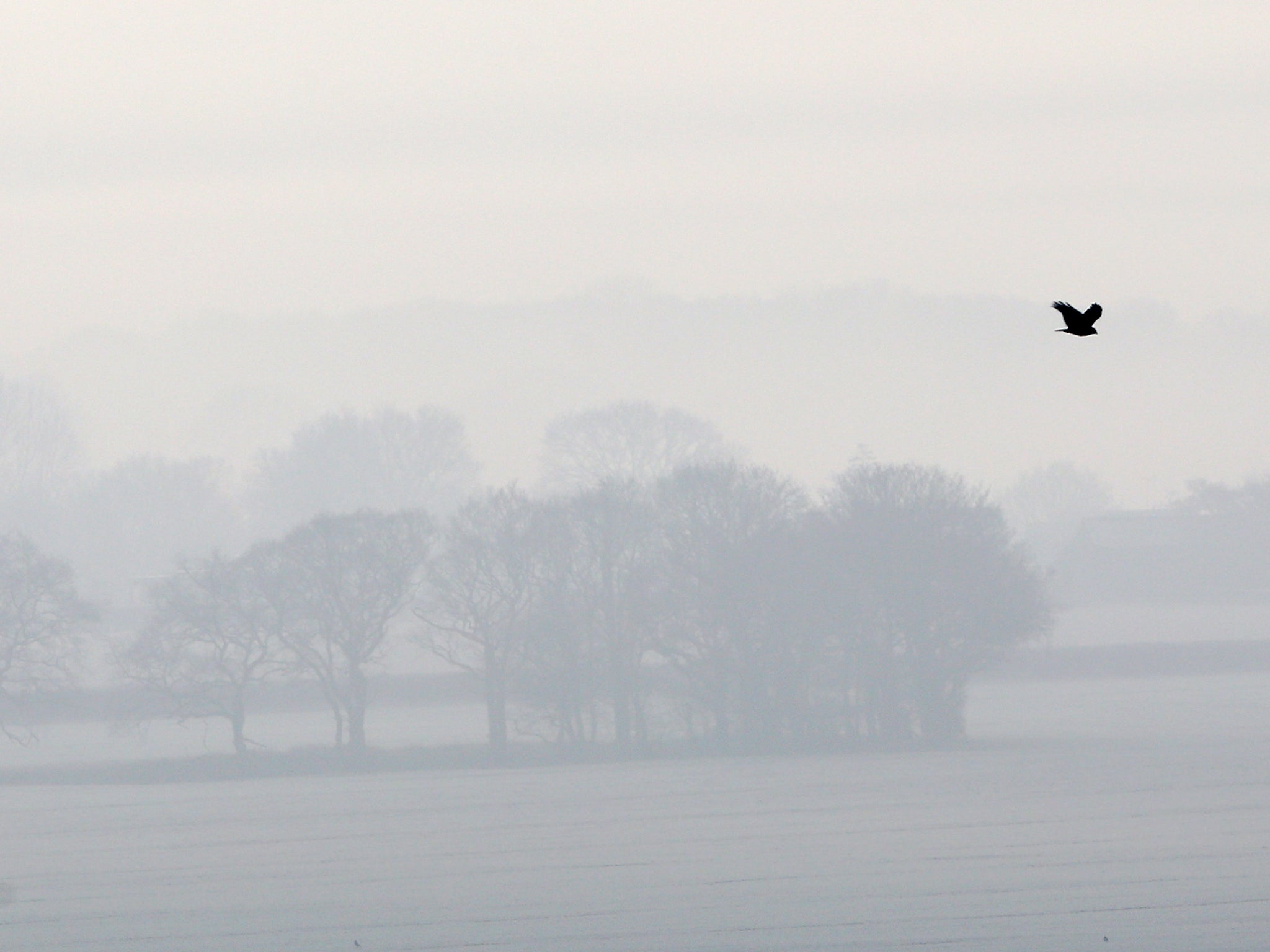 UK weather: Freezing fog causes rush hour travel chaos and flight delays