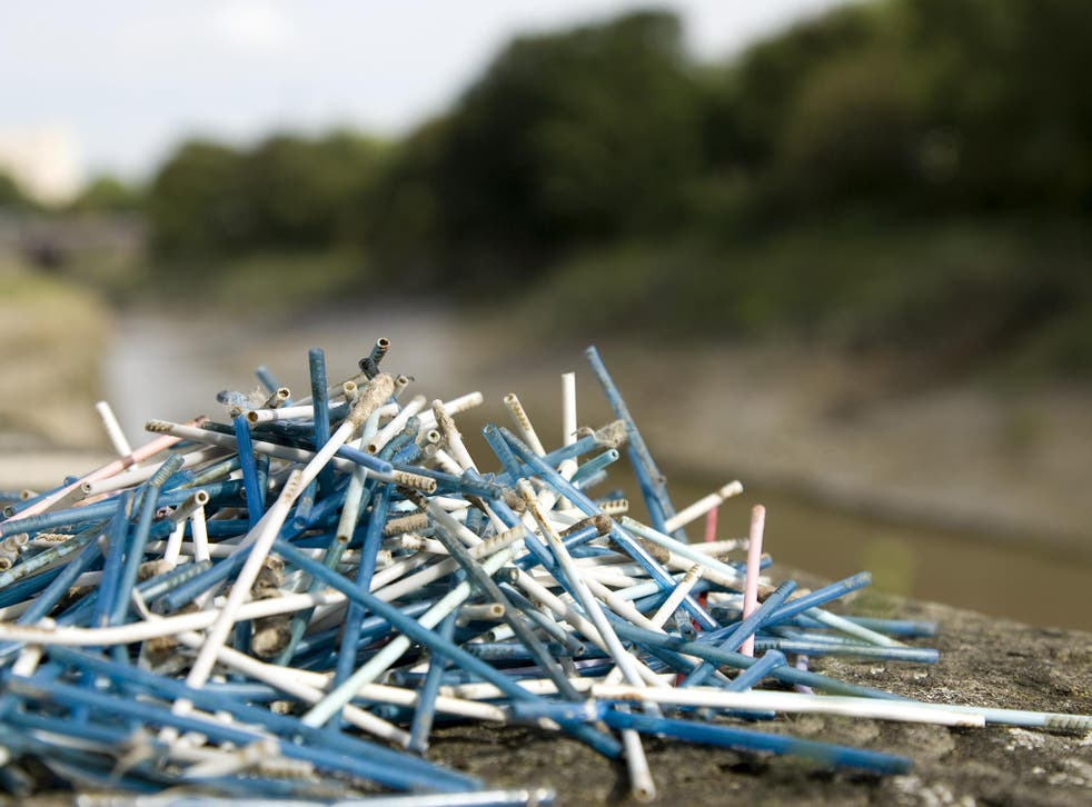 Cotton buds collected along the River Avon, Bristol