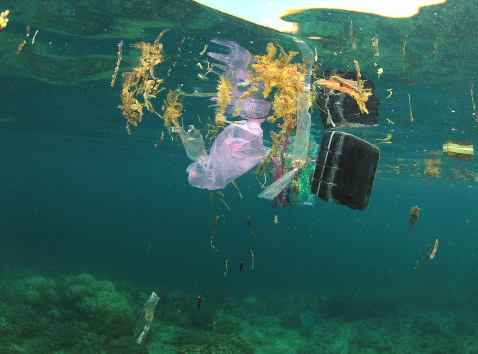 The amount of plastic in the ocean is estimated to be roughly 250,000 square miles which is the same size as Texas