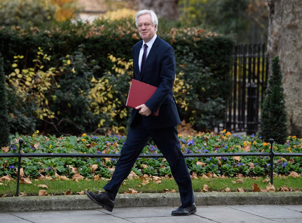 Brexit Secretary David Davis was subject to little scrutiny after the Bill was published