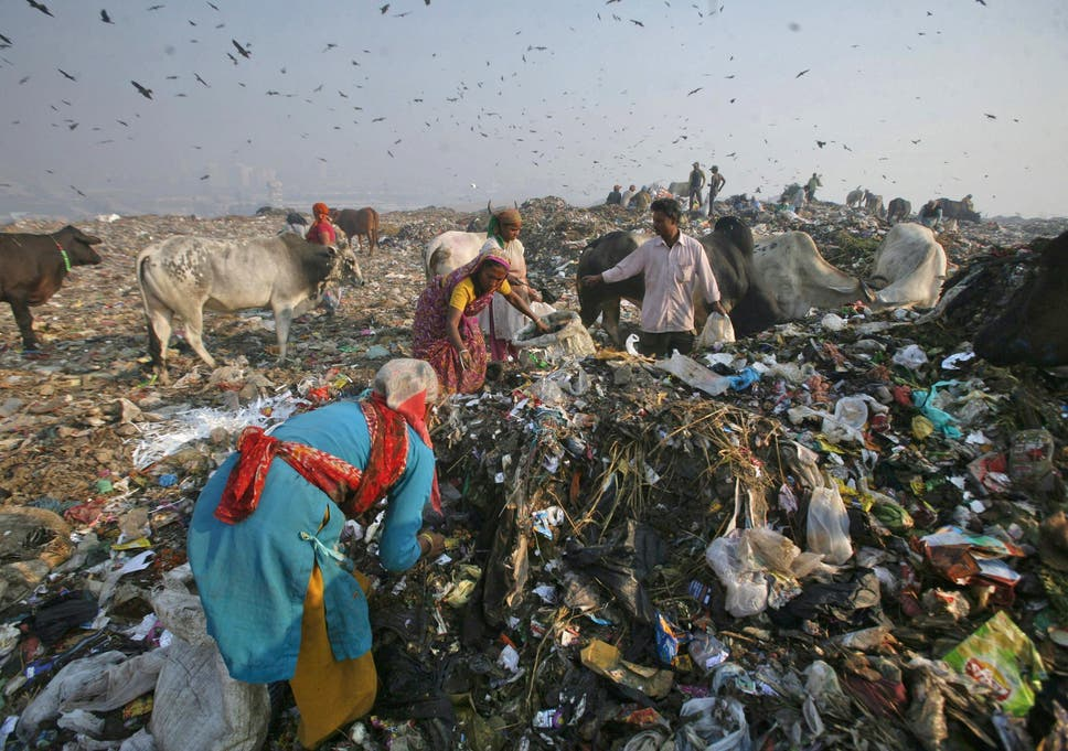 india just banned all forms of disposable plastic in its capital  india just banned all forms of disposable plastic in its capital