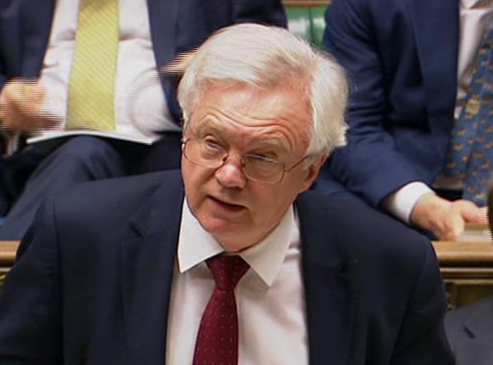 David Davis said it was 'unnecessary' to amend the Brexit Bill to make sure Parliament is given a final vote on Brexit