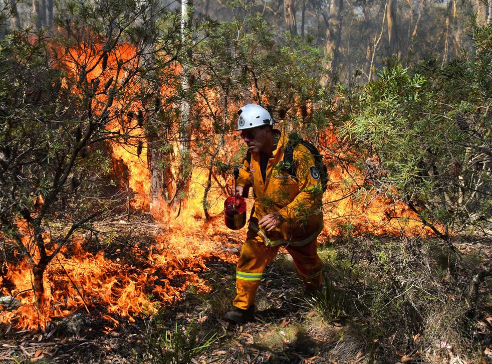 A firefighter tackling a blaze in 2013, when searing heat across New South Wales caused bush fire which destroyed more than 200 homes.
