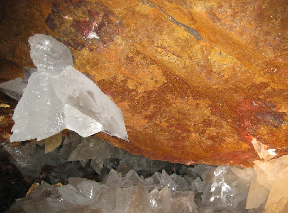 Scientists have discovered life trapped in crystals that could be 50,000 years old in caves in Mexico