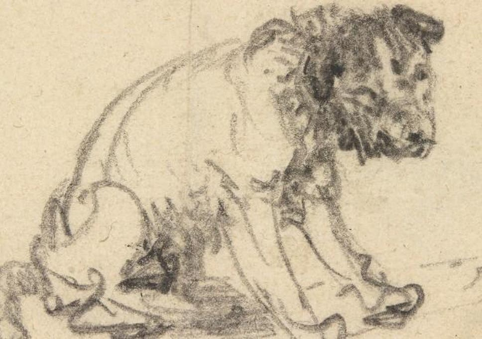 Rembrandt Dog Sketch Identified After Being Credited To German