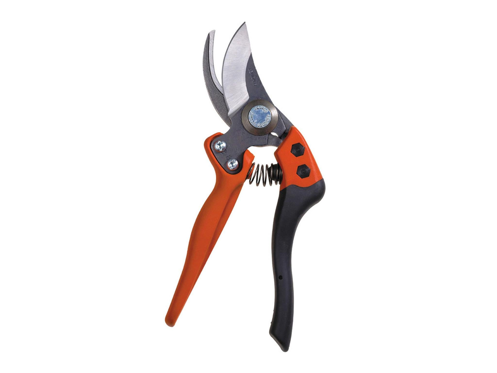 How to choose a garden pruner: review, manufacturers, types and reviews 88