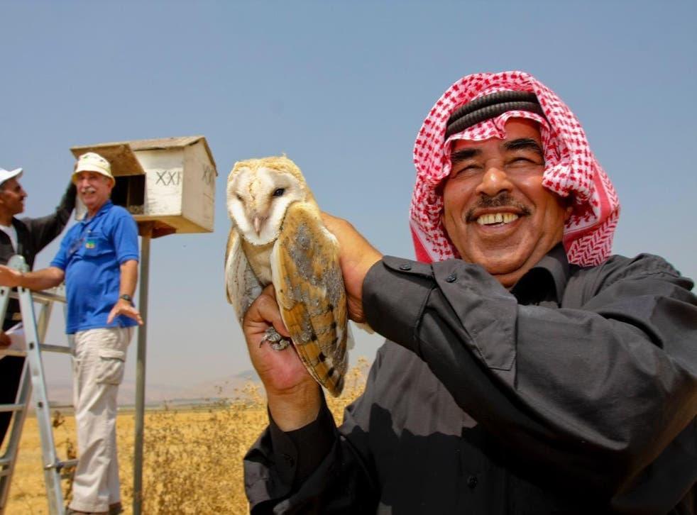 A Jordanian farmer holds a barn owl as a Jewish Israeli farmer, in the blue top, examines a nest box