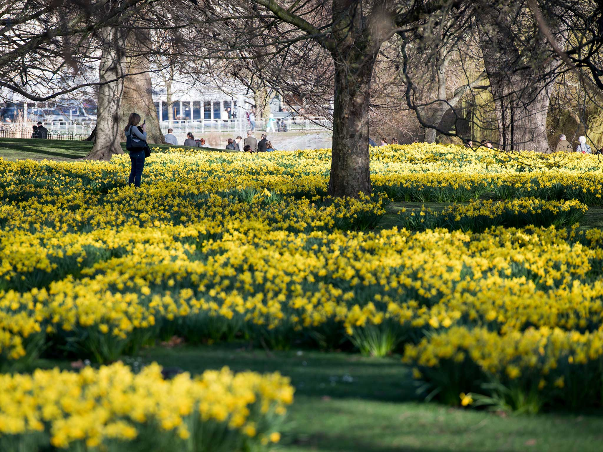 UK weather latest: Sunshine to replace rain as temperatures soar ...