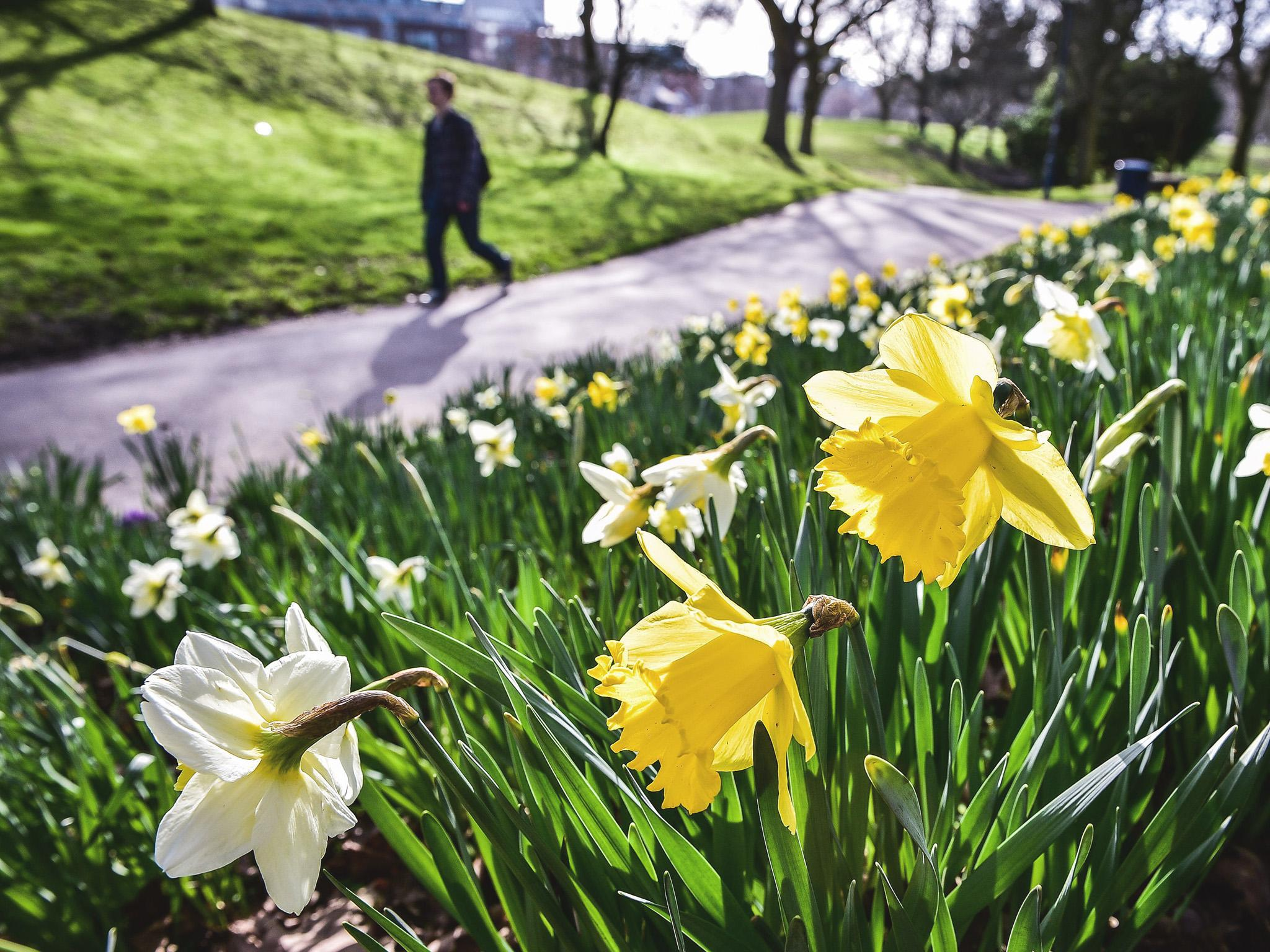 spring equinox vernal independent definition march date start starts meaning science why