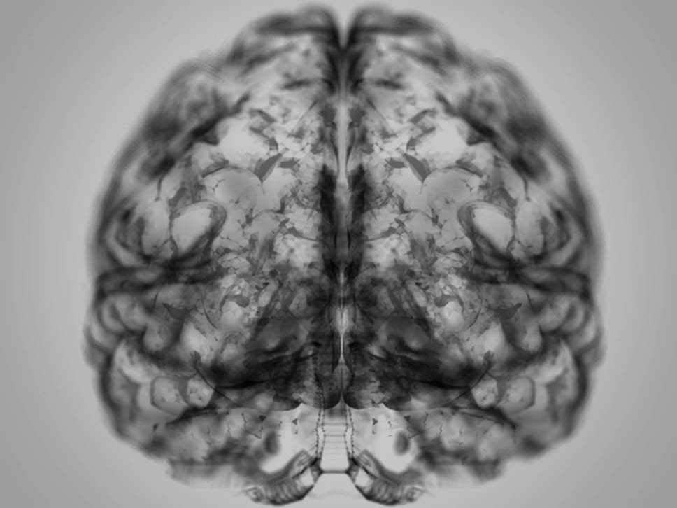 Freuds divide between psychiatry and neurology is redundant neurologists and psychiatrists made the surprising discovery that up to 14 per cent of the genes fandeluxe Gallery