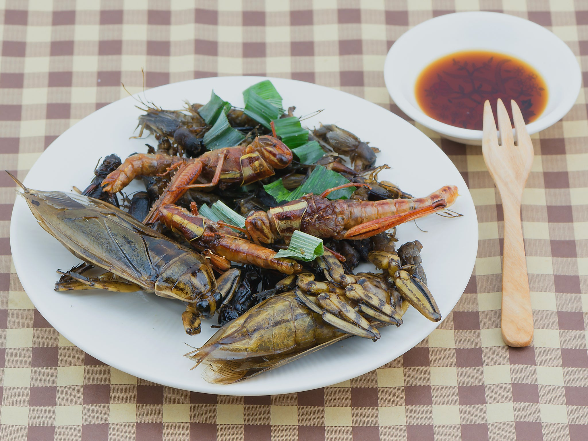 Belgian start up puts crickets on the menu | The Independent