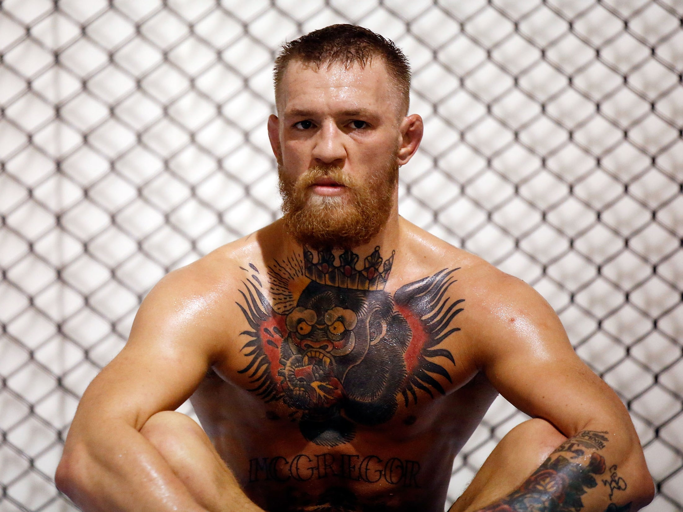mc gregor latin singles Ufc lightweight champion conor mcgregor has a 7/4 chance of appearing at wrestlemania 34, according to bookmakers.