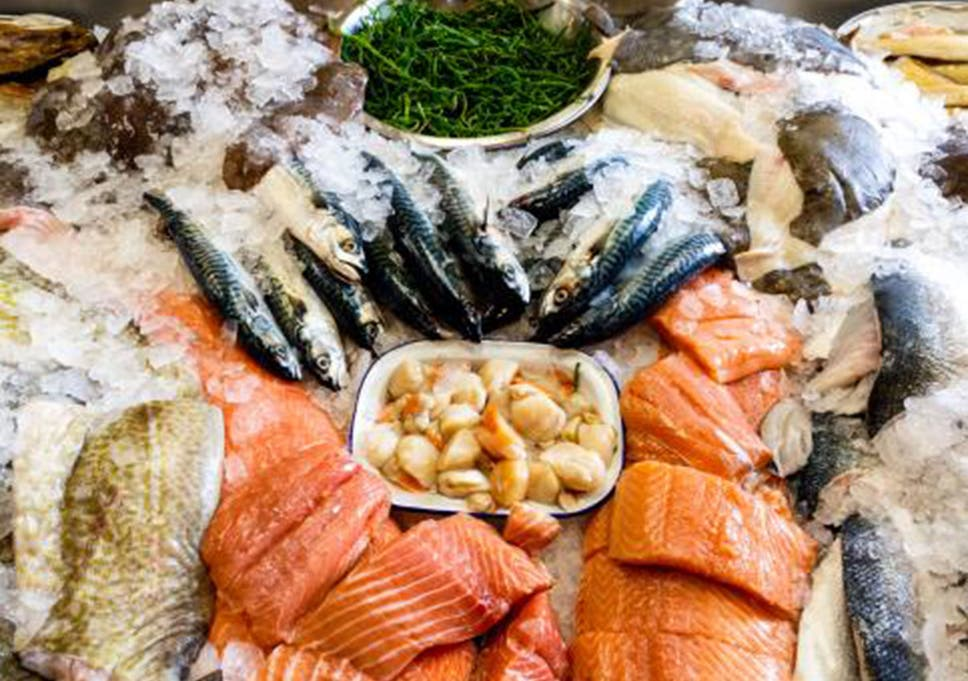 Green fish: Navigating the waters of sustainable seafood
