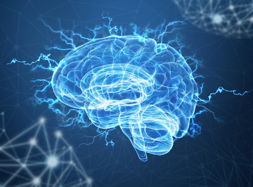 Damage to the ventromedial prefrontal cortex makes it harder for a person to change their views