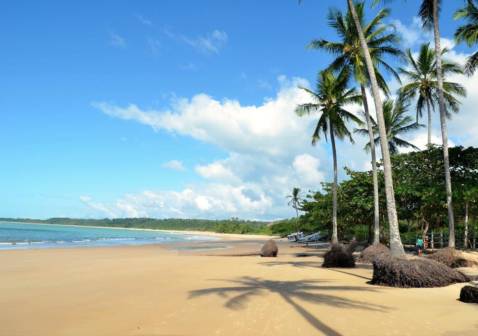 Image result for bahia beach brazil