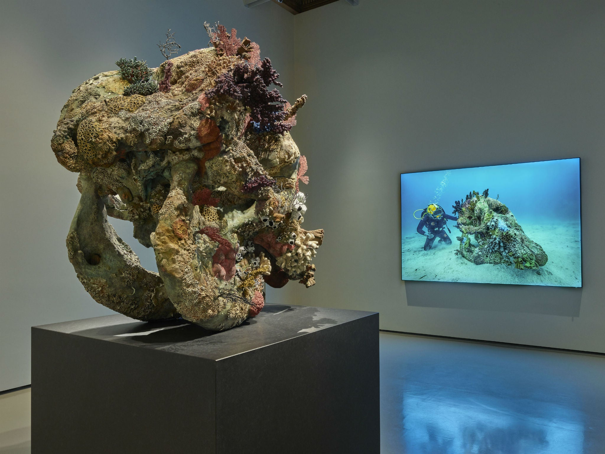 How Damien Hirst Staged His Comeback With Sunken Treasures In Venice
