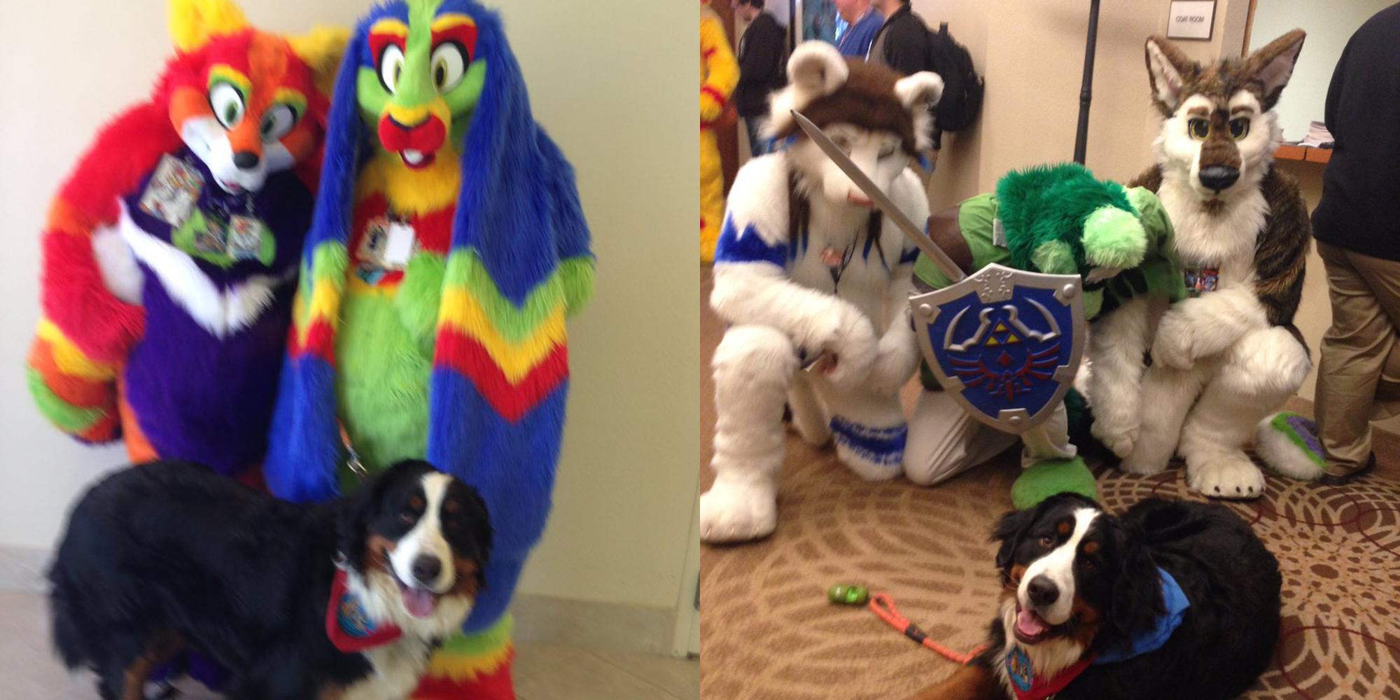 A woman went to a furry convention with her dog thinking it