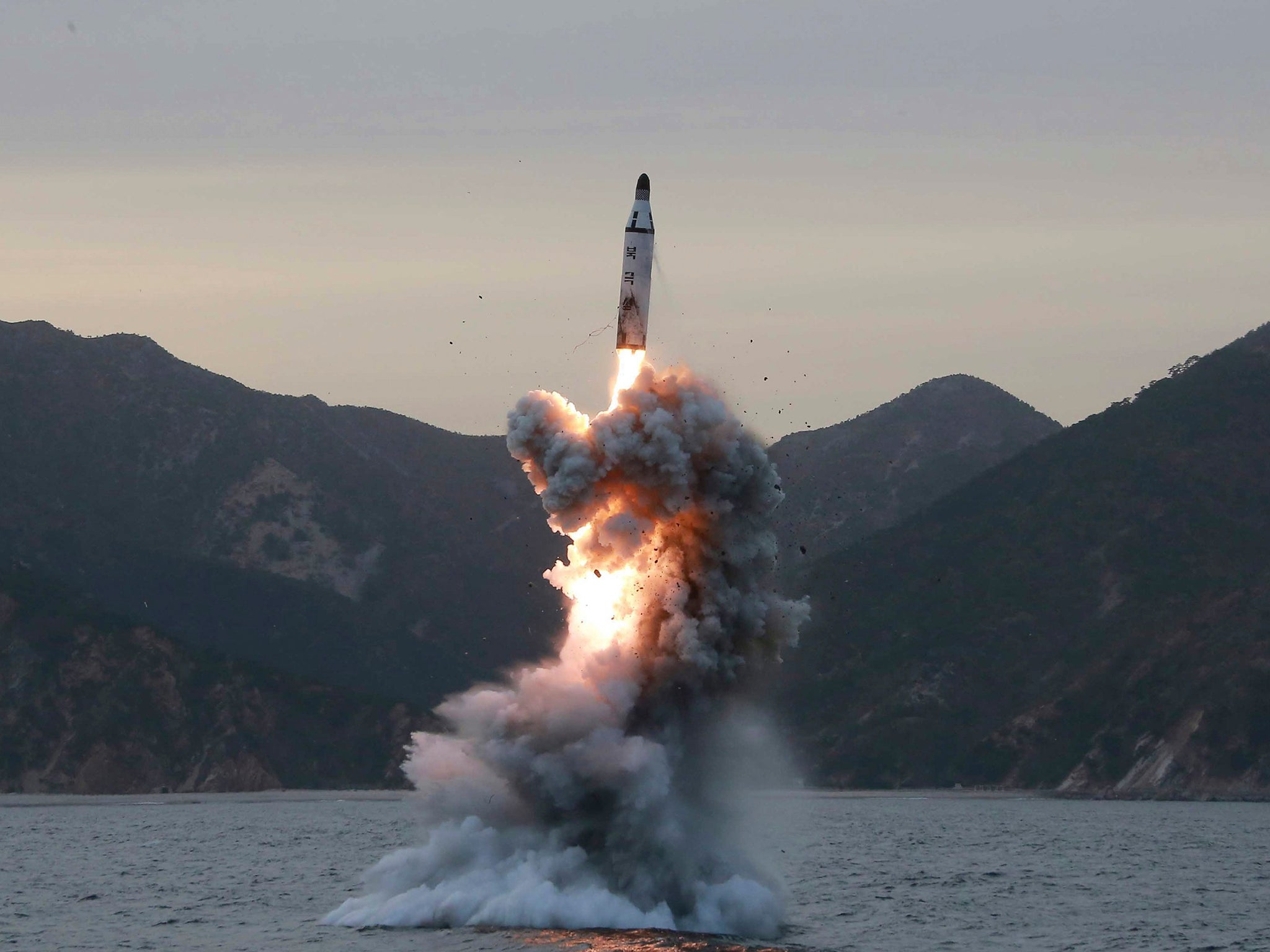 Image result for the working north korean missile