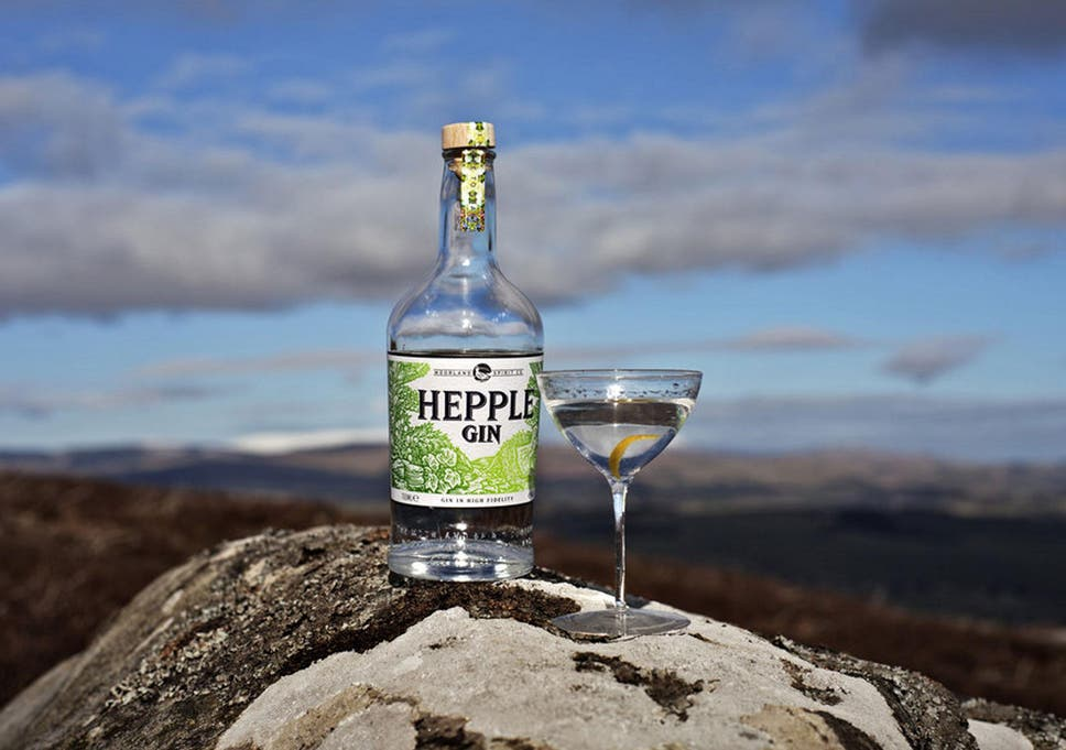 Bottle Notes Eye In Sky >> 10 Best New Gins The Independent