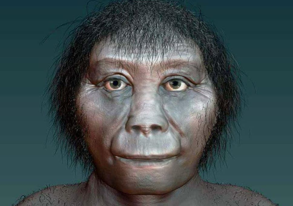 Real Life Hobbits Could Be One Of The Earliest Forms Of Human Say