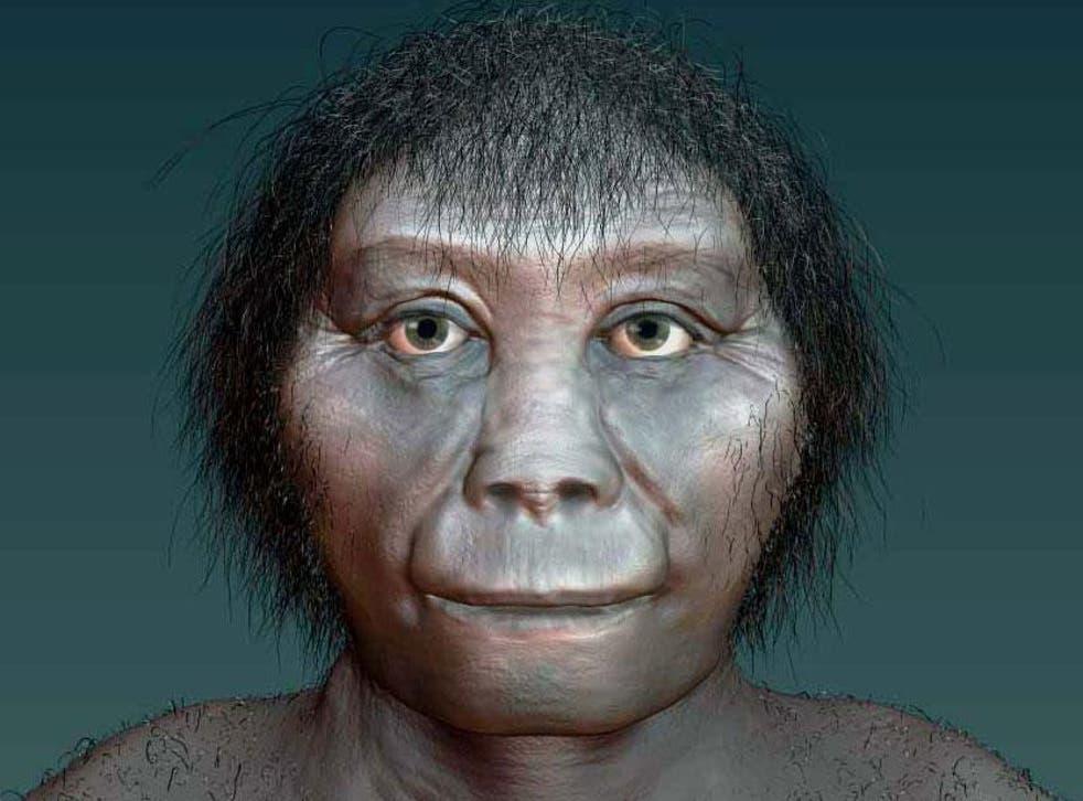 An artist's impression of Homo floresiensis