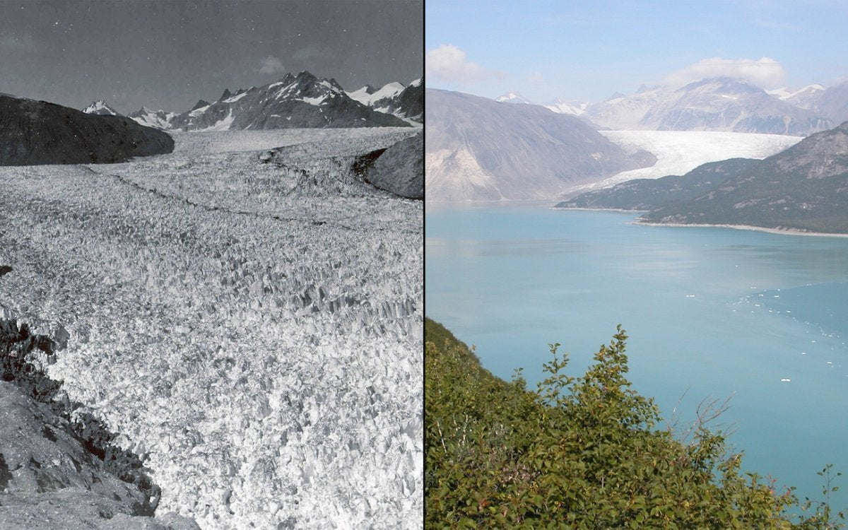 Earth is losing its ice: Glaciers around the world are rapidly disappearing