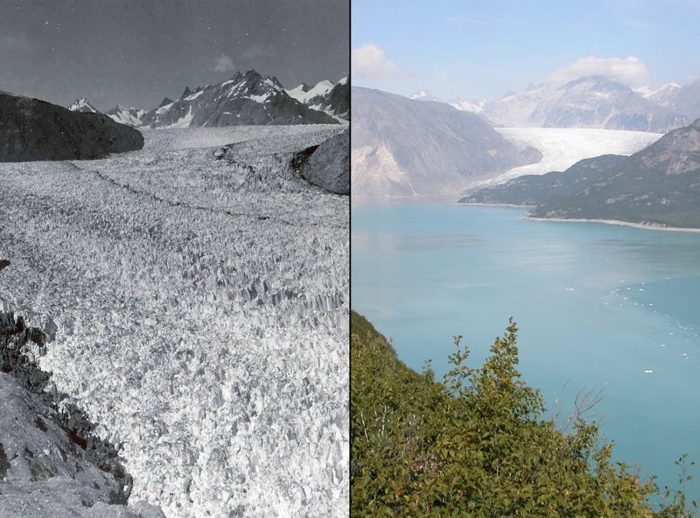Alaska's Muir Glacier, pictured in August 1941 (left) and August 2004
