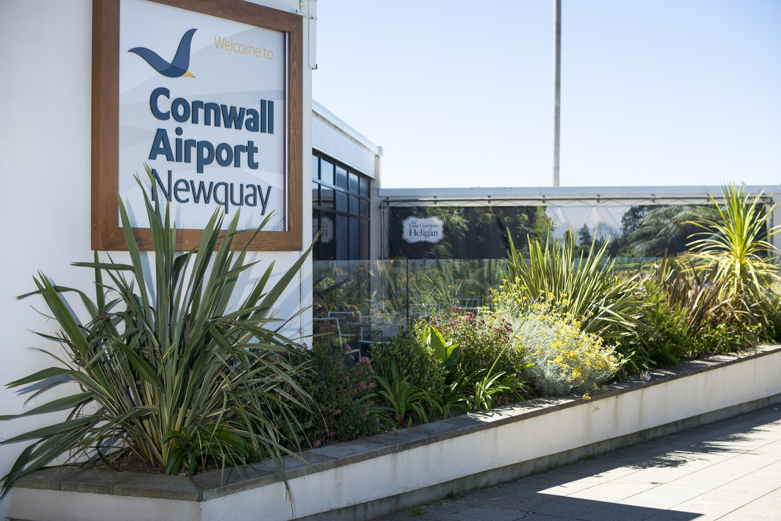 Speed dating newquay cornwall