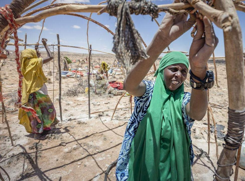 Farhia, a 25-year-old pastoralist in northern Somalia sets up home after moving for the fourth time in search of rain
