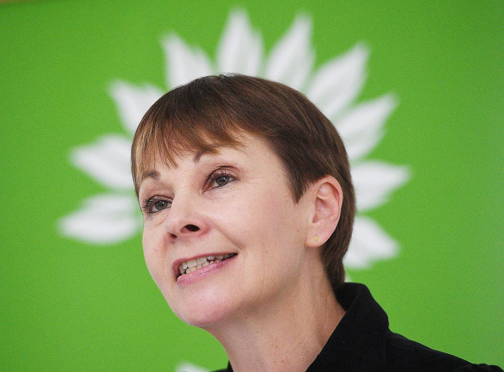 Caroline Lucas said the need for the Green Party had never been greater