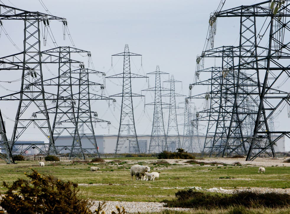 Theresa May has vowed to cap energy tariffs