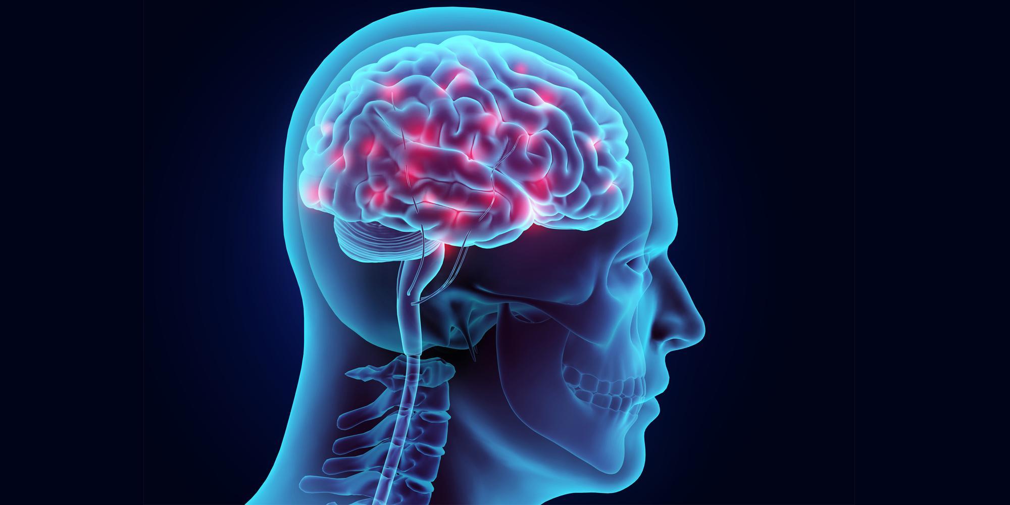 Image result for Intelligent
