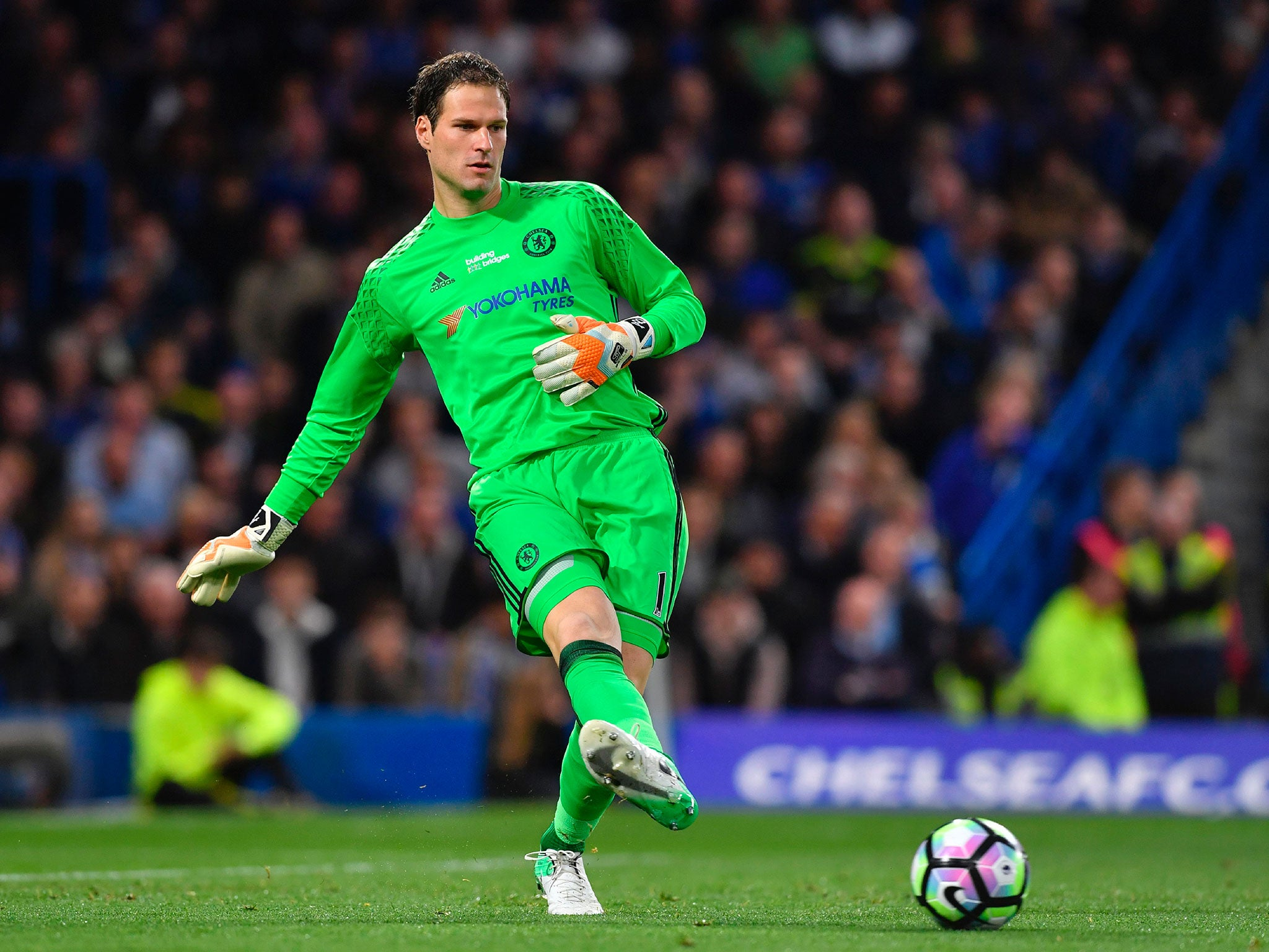 Asmir Begovic calls for Premier League winners' medal rethink as Chelsea goalkeeper says he doesn't deserve one