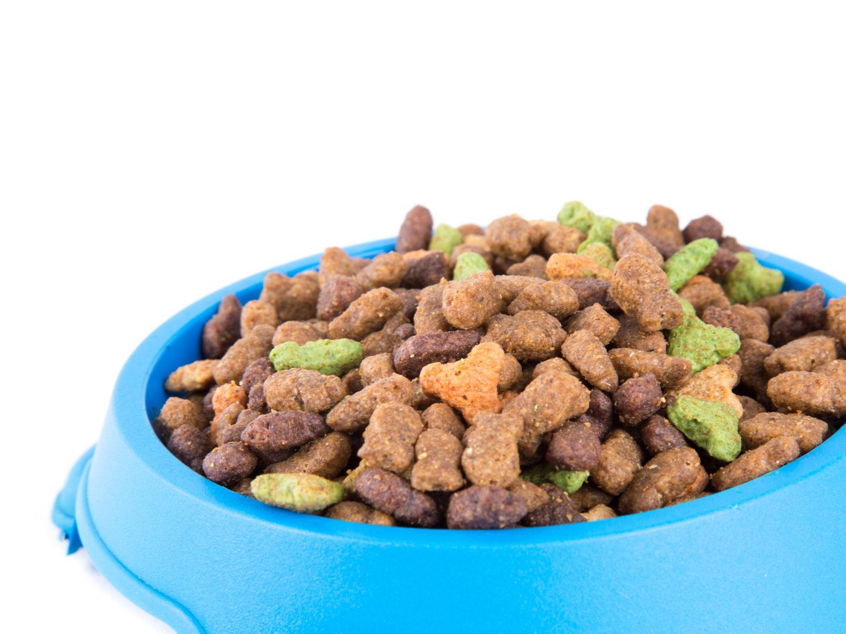 Former nurse 'forced to eat dog food' after her benefits ...