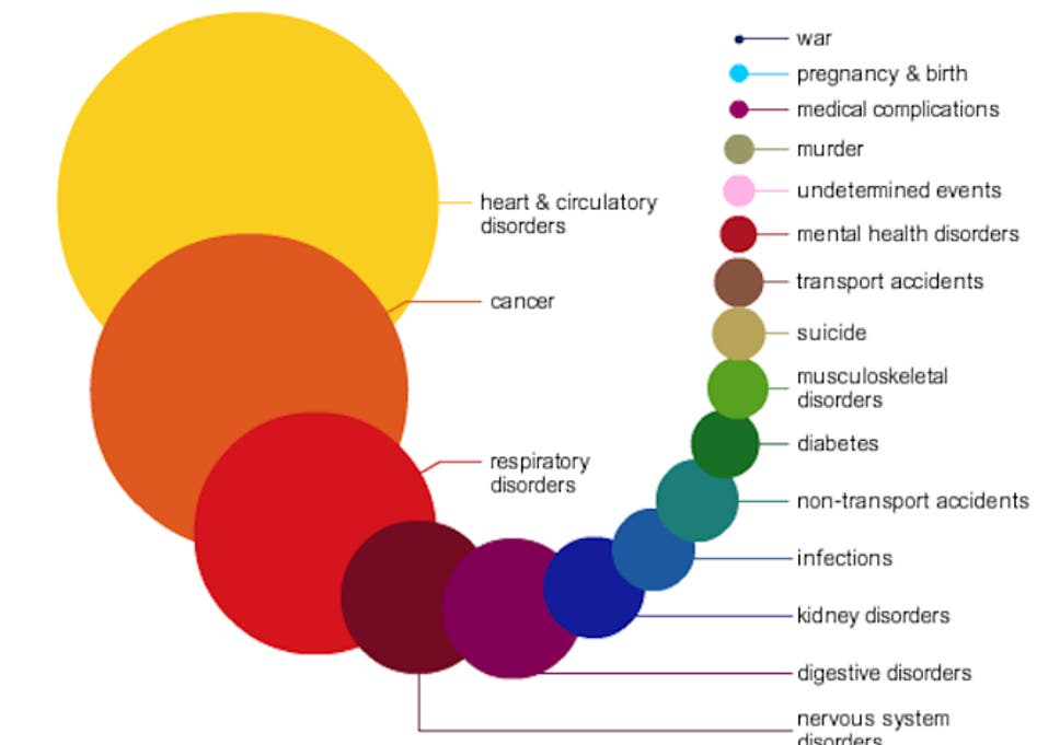 Mental Disorders Among Leading Causes >> The Things Most Likely To Kill You In One Infographic The
