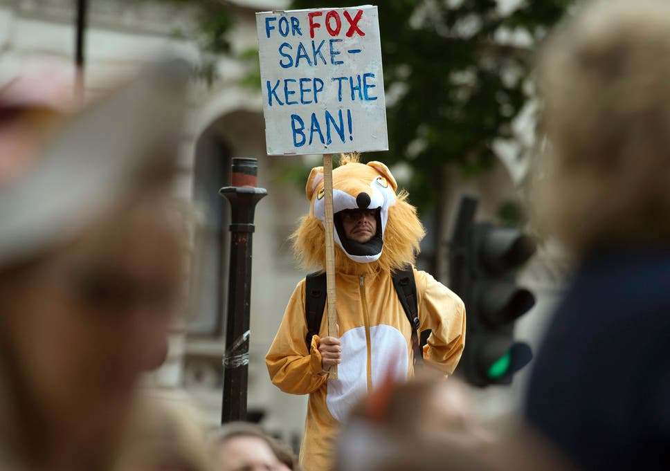 Voters Are Being Turned Off By Theresa Mays Fox Hunting Plans  The  Theresa May Has Come Under Fire For Suggesting Their May Be A Vote On  Repealing The Essays About Business also Model English Essays  Argumentative Essay Examples High School