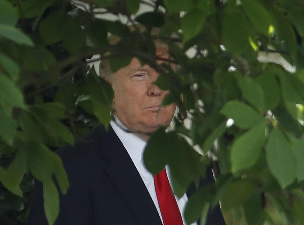 President Donald Trump walks out of the Oval Office to the Rose Garden of the White House