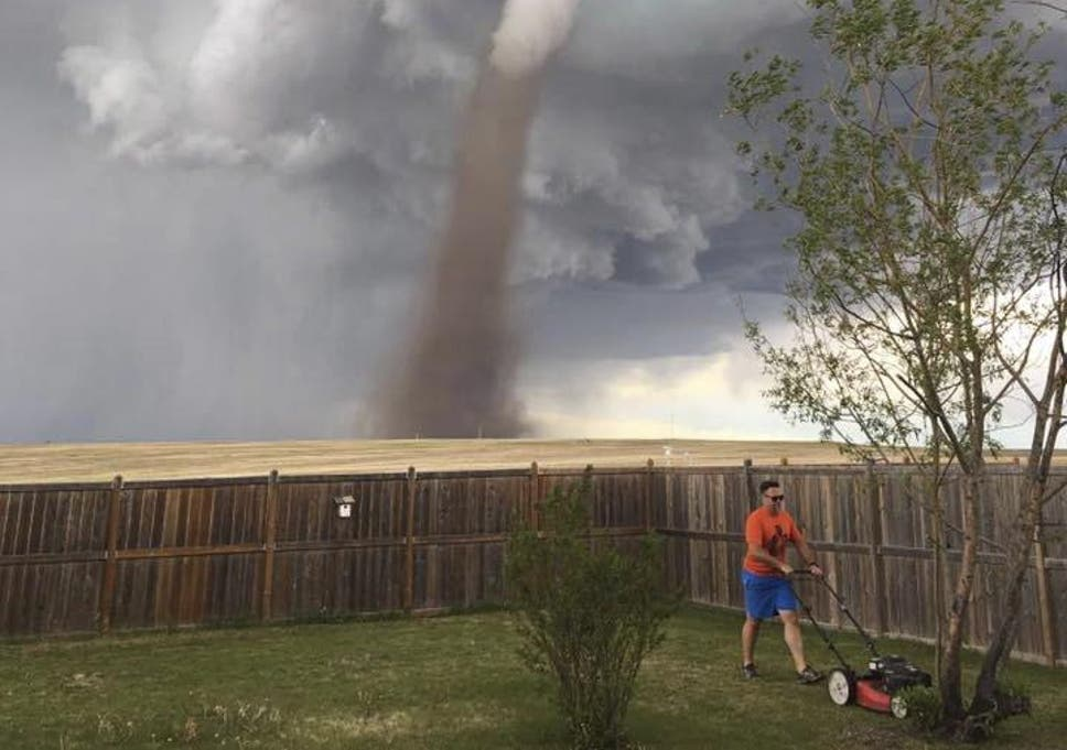 Canadian Man Photographed Casually Mowing Lawn In Defiance Of