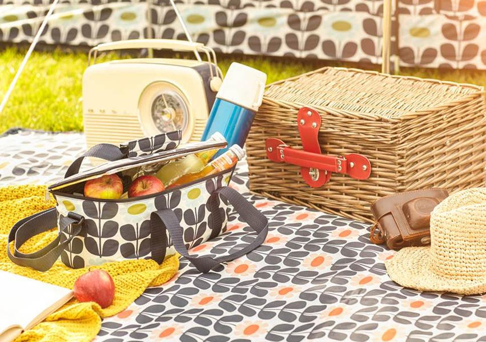 Keep your picnic ready-to-eat with the help of one of these effective  carriers 852999aa5745