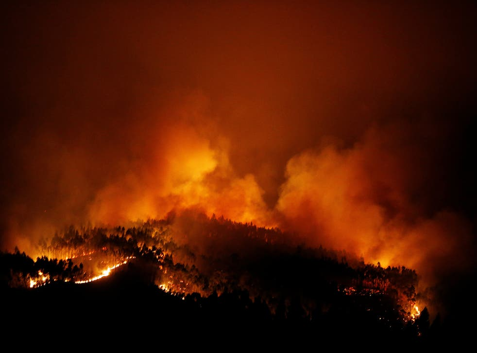 The forest fire  near Tojeira, in central Portugal, which killed 64 people in June