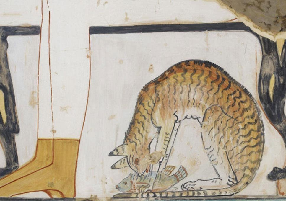 How Ancient Egypts Beloved Cats Helped Our Feline Friends Colonise