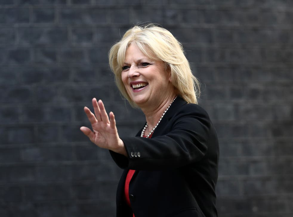 Conservative Remainer Anna Soubry is joint author of a report that warns 'wrenching' Britain out of the free trade group would 'unilaterally surrender the best economic option for our country'